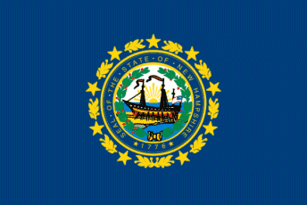 new hampshire state flag